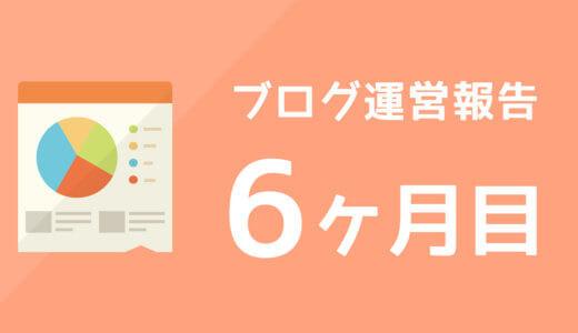 【ブログ運営報告】6ヶ月目のPV数と収益