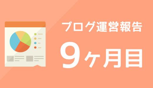 【ブログ運営報告】9ヶ月目のPV数と収益